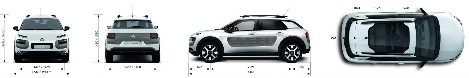 C4 Cactus Shine edition 2014 dimensions